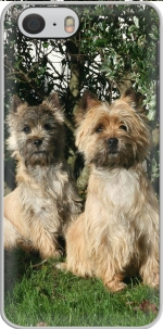 Capa Cairn terrier for Iphone 6 4.7