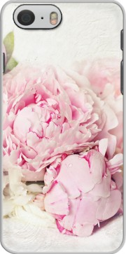 Capa peonies on white